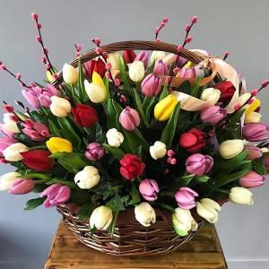 Корзина 101 разноцветный тюльпан R992