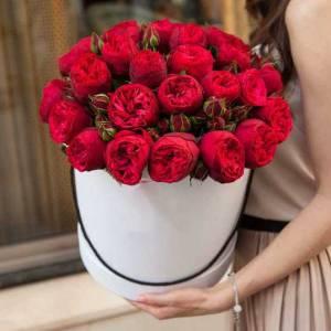 31 ветка красной пионовидной розы в коробке R183